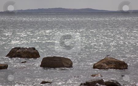 Cuttyhunk Island from Westport Massachusetts Ocean Seagull Rocks stock photo, Cuttyhunk Island from Westport Massachusetts Ocean Rocks Seagull by William Perry