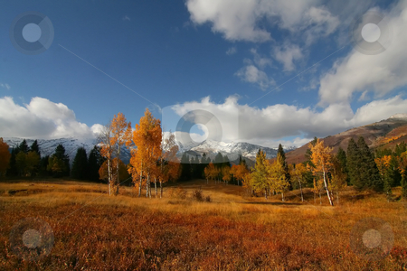 Mountain Splender 45 stock photo, High Mountain Flat in the fall showing all the fall colors with mountains in the background by Mark Smith