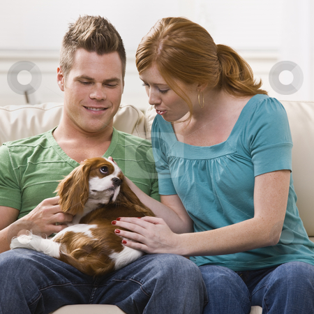 Young Couple Holding Dog stock photo, A young and attractive couple holding and petting a dog. Square framed photo. by Jonathan Ross