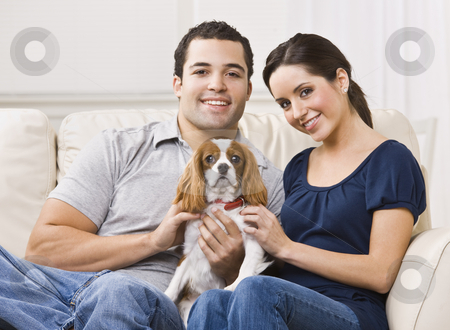 Couple with dog on their lap in their living room. stock photo, Attractive couple with their dog on their living room couch. horizontal by Jonathan Ross