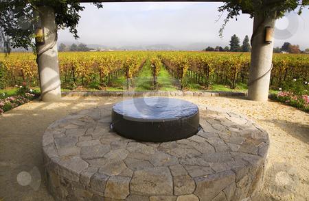 Garden Fountain Vineyards Fog Tree Napa California stock photo, Garden Stone Fountain Napa Vineyards Fog California by William Perry