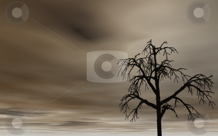 Tree stock photo, Dark sky and lonely tree by J?