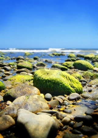 Stone Beach stock photo, Stone beach with green stones and the ocean in the background. by Henrik Lehnerer
