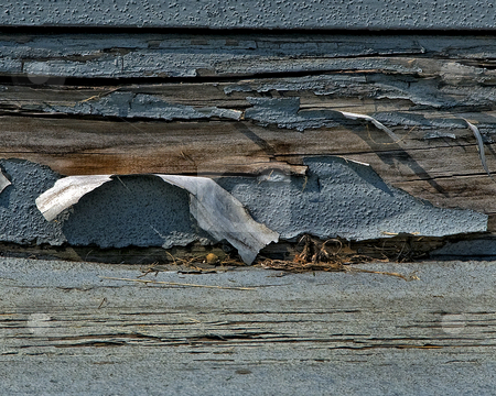Weathered Paint stock photo,  by W. Paul Thomas