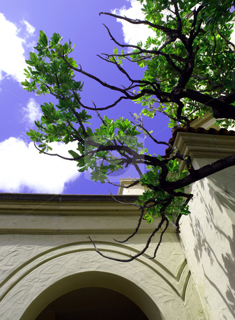 Leafy tree branch against blue cloudy sky and arched doorway stock photo, View up through a green leafy tree branch to a bright blue sky and arched doorway opening by Jill Reid