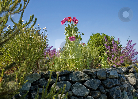 Rock Wall Garden Scene stock photo, This rock wall is the stage for a beautiful floral garden scene with trees and blue sky. by Valerie Garner