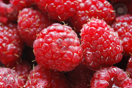 Raspberries stock photo, A close up of ripe raspberries with water drops. by Denis Radovanovic