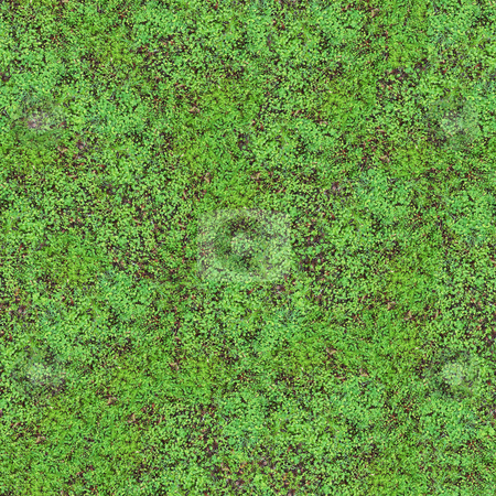 Clover Field Seamless Pattern stock photo, Clover Field Seamless Pattern - this image can be composed like tiles endlessly without visible lines between parts by Denis Radovanovic