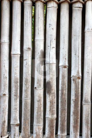 Bamboo Wall stock photo, An old bamboo wall held together by rope. by Brandon Seidel
