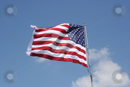 American Flag stock photo, An American flag blows wildly in the wind. by Brandon Seidel