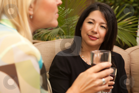 Two Girlfriends Enjoy Wine on the Patio stock photo, Two Girlfriends Enjoy Wine on the Outdoor Patio. by Andy Dean