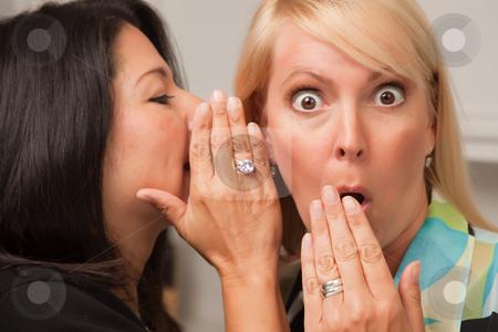 Friends Whispering Secrets stock photo, Two Friends Whispering Secrets in the Ear. by Andy Dean