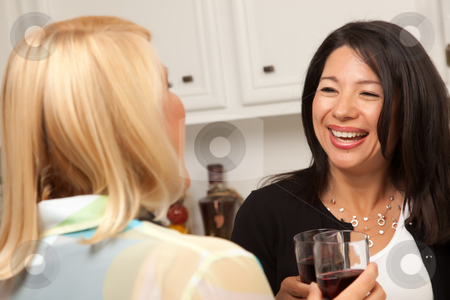 Two Girlfriends Enjoy Wine in the Kitchen stock photo, Two Girlfriends Enjoy a Glass of Wine in the Kitchen. by Andy Dean