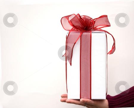Hand Holding Red Bow Wrapped Gift stock photo, A hand is holding a gift of a package in a white box with a sheer red bow ribbon against a white background. by Valerie Garner