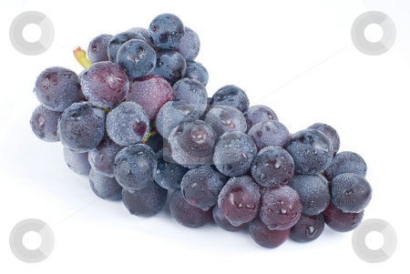 Grapes with drops, fresh fruit. stock photo, Isolated grapes with drops on white background by Lawren