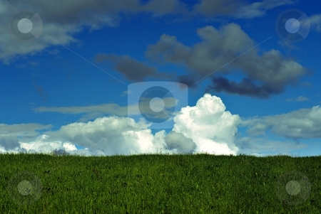 Summer meadow stock photo, Summer meadow with cloudy sky by Juraj Kovacik