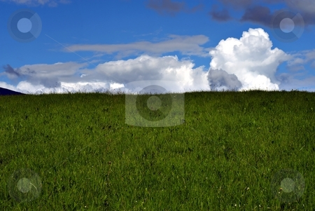 Summer green meadow stock photo, Summer green meadow with cloudy sky by Juraj Kovacik