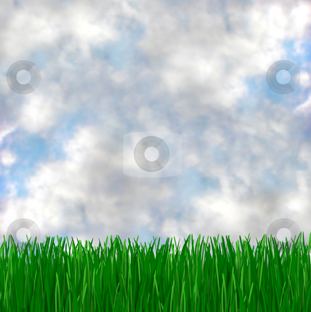 Green Grass Meets Blue Sky stock photo, A green, grassy field and cloudy blue sky, makes for a beautiful background by Chris Lamphear