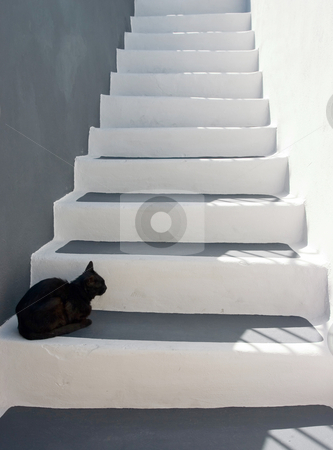 Black cat on the stairs stock photo, Black cat sitting on the stairs by Wiktor Bubniak