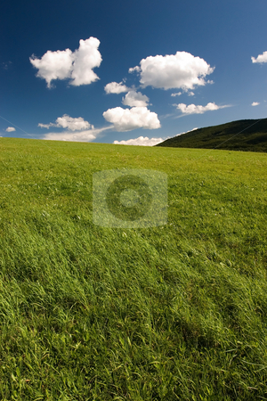 Summer abstract landscape stock photo, Summer abstract landscape with small white clouds by Wiktor Bubniak