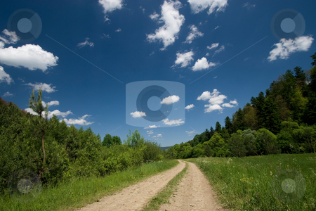 Countryside road stock photo, Countryside road in the forest with white clouds by Wiktor Bubniak
