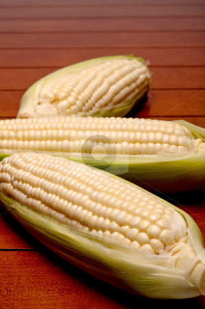 Vertical shallow focus close up of three cobs on corn stock photo, Vertical shallow focus close up of three cobs on corn by Vince Clements