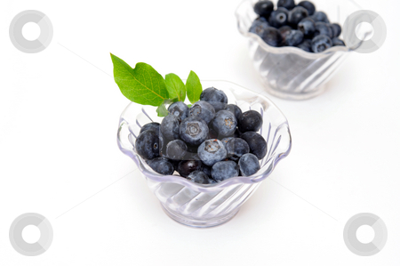 Blueberries In Clear Bowls stock photo, Fresh picked blueberries in clear plastic bowls on a light colored background by Lynn Bendickson