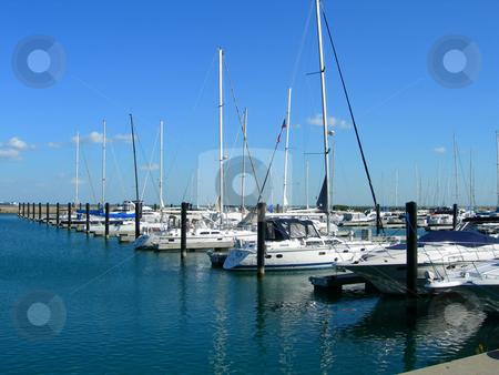 Sailboats in Chicago harbor stock photo, Sailboats aligned in Chicago harbor close to Navy Pier by Daniela Mangiuca
