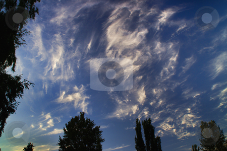 Sky Paint, Fair Weather Clouds Sunny Day stock photo, Fair Weather Clouds on a Sunny Day Resembling a Van Gogh Like Painting Taken at Juanita Beach, Kirkland, Washington by William Perry