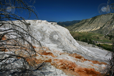 Mammoth Hot Springs Lower Terrace Yellowstone  stock photo, Mammoth Hot Springs Lower Terrace, Yellowstone National Park, Wyoming by William Perry