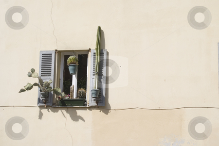 Window stock photo, Tradional shutters in Provence (France)-