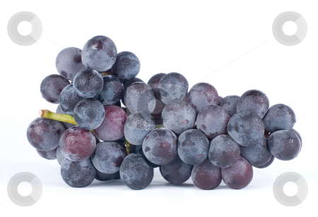 Isolated grapes stock photo, Isolated grapes on white background by Lawren