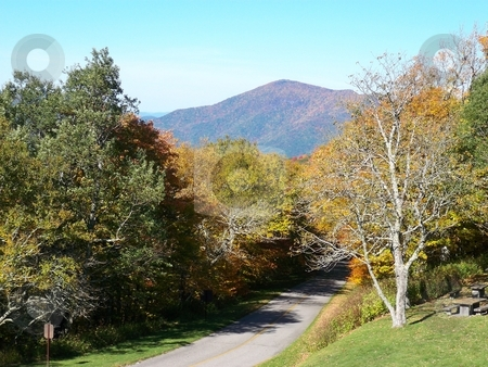 Autumn Drive stock photo, An access road leads through the forest to a picnic area off the Blue Ridge Parkway. by Rebecca Ledford