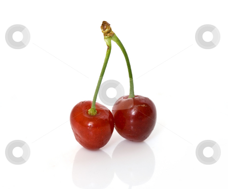 Two cherries stock photo, Couple of cherry isolated on white background by ANTONIO SCARPI