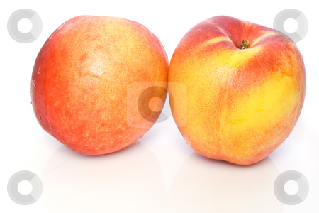 Pesche nettarine stock photo, Two fresh ripe nectarines isolated on white background by ANTONIO SCARPI