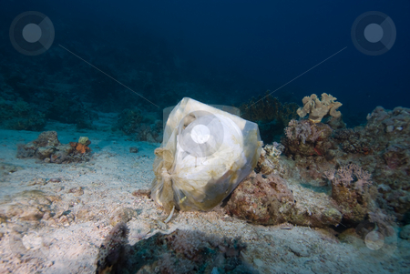 Garbage bag dumped underwater stock photo, Garbage bag dumped underwater. Red Sea, Egypt by Mark Doherty