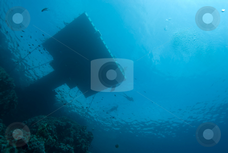 Floating jetty above a coral reef stock photo, Floating jetty above a coral reef. These are placed along the coast line to prevent tourists from walking on the reef. Red Sea, Egypt,horizontal by Mark Doherty