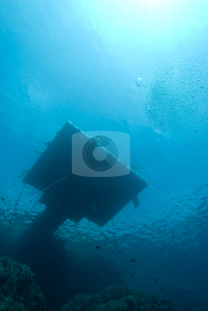 Floating jetty above a coral reef stock photo, Floating jetty above a coral reef. These are placed along the coast line to prevent tourists from walking on the reef. Red Sea, Egypt,vertical by Mark Doherty