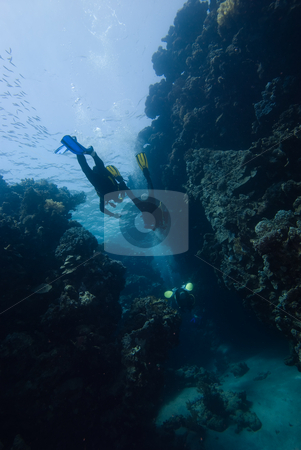 A shot from below of a group of divers entering an underwater ca stock photo, A shot from below of a group of divers entering an underwater cave,low angle rear view. Red Sea, Egypt. by Mark Doherty
