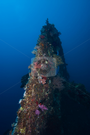 The stern section of the shipwreck Dunraven stock photo, The stern section of the shipwreck Dunraven. Low angle view. Red Sea, Egypt. by Mark Doherty