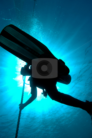 Silhouette of a diver completing a saftey stop on a mooring line stock photo, Silhouette of a diver completing a saftey stop on a mooring line. Red Sea, Egypt by Mark Doherty
