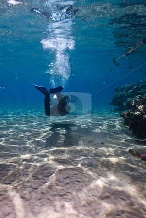 Diver in the shallows of a sandy tropical bay stock photo, Diver in the shallows of a sandy tropical bay by Mark Doherty