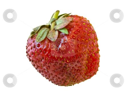 Strawberry  stock photo, Single isolated strawberry against the white background by Sergej Razvodovskij