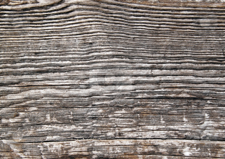 Weathered wood lines natural abstract texture background. stock photo, Weathered wood lines natural abstract texture background. by Stephen Rees