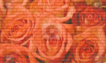 Roses  brick wall stock photo, Roses brick wall background. Many old bricks . by Vladyslav Danilin