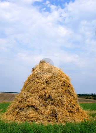 Haystack hay straw stock photo, Landscape with haystacks and blue sky with cloud. by Vladyslav Danilin