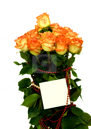 Roses stock photo, Roses bouquet close-up isolated on white background by Vladyslav Danilin