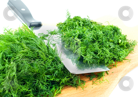Dill herb cut  stock photo, Dill herb cut ,isolated on green background by Vladyslav Danilin