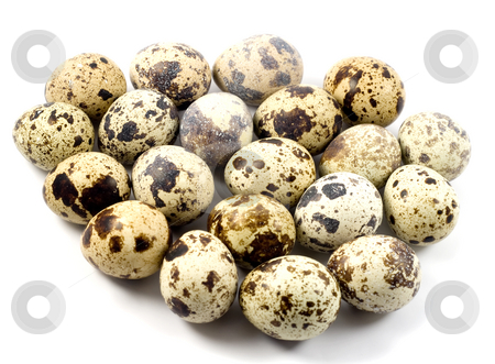 Quail eggs in egg shape   stock photo, Quail eggs in egg shape , isolated on white background. by Vladyslav Danilin