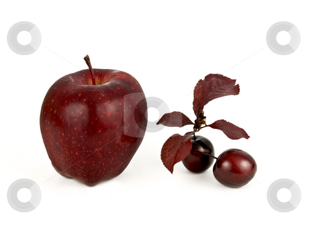Red Fruit stock photo, Apple and cherries on a white background by John Teeter